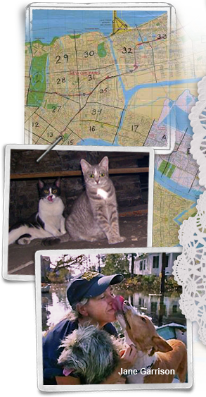 food/water maps, stranded cats, Jane Garrison 293x563