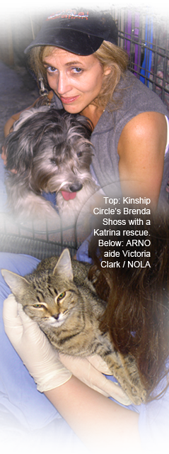 Kinship Circle founder Brenda Shoss helps out at ARNO, volunteer Victoria Clark cradles a kitten 239x640