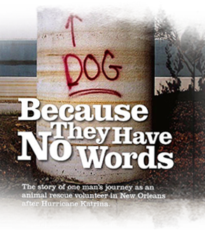 Because They Have No Words, a play about Katrina animal rescue, is nominated for award 293x330