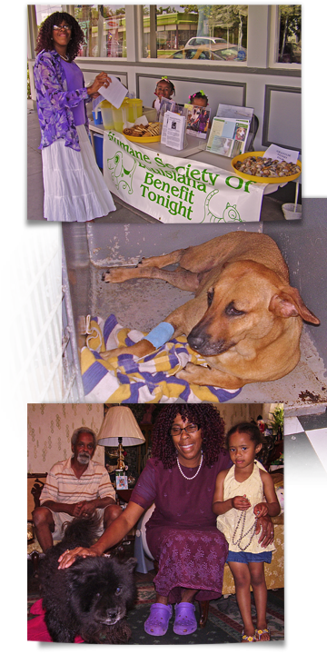 Humane Society of Louisiana sells lemonade to aid Katrina dogs 360x720