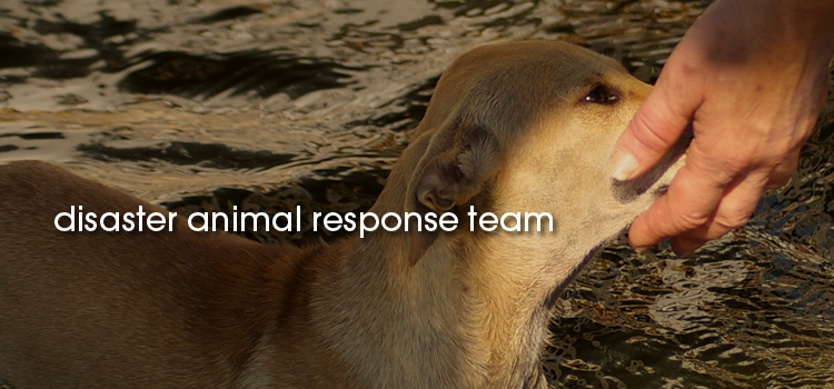 2_disaster-animal-response-team