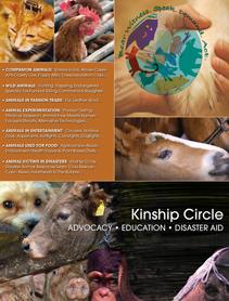 About Kinship Circle